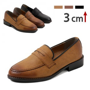 3cm Gradation Colored Penny Loafers (IW2093)